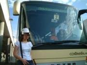 toredo bus