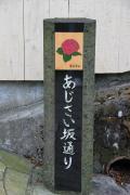 2010 Hakone 03