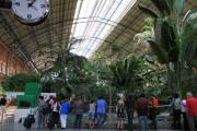 2010 Atocha 001