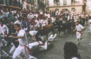 012 Pamplona