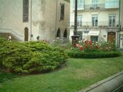 565 サンフェルナンド広場の花壇