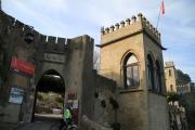 7330 Castillo de Jaacute;tiva