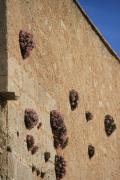 7571 Castillo de Jaacute;tiva