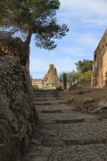 7880 Castillo de Jaacute;tiva