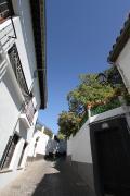 14 Granada
