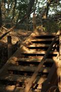 12 王禅寺ふるさと公園
