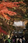 09 円覚寺