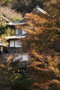 05 円覚寺
