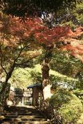 03 円覚寺
