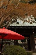 24 海蔵寺
