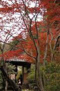 22 海蔵寺