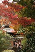 21 海蔵寺