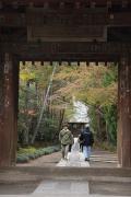 27 寿福寺
