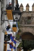24200 Calle Puerta de Almodovar