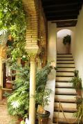 24710 Casa Andalusi
