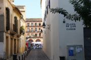 25960 Plaza de las Canas