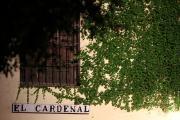 30730 Tablao El Cardenal