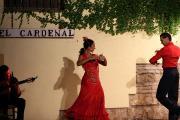 30890 Tablao El Cardenal