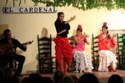 32540 Tablao El Cardenal