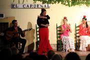 32530 Tablao El Cardenal