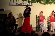 32510 Tablao El Cardenal
