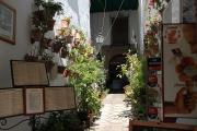 29090 Calle del Cardenal Herrero