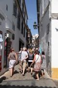 29110 Calle de Cespedes