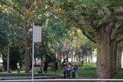 40440 Parc de Jaume Balmes