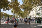 41131 Passeig Joan de Barbo