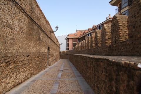 1414 muralla de Calle las Cercas