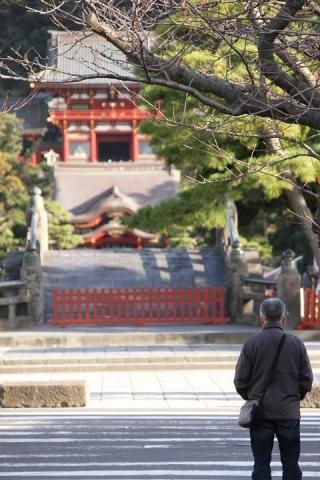 004 鶴岡八幡宮