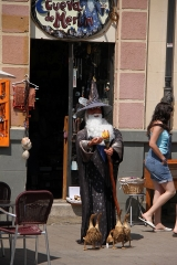 1633 Plaza Santocildes