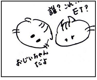 80-1.jpg