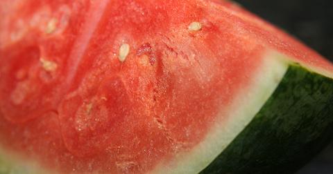 catch_watermelon.jpg