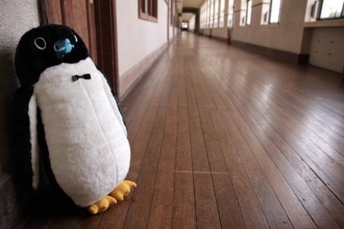 着ぐるみペンギン