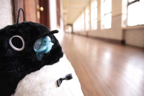 着ぐるみペンギンその2