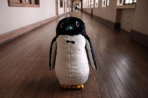 着ぐるみペンギンその4