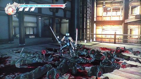 ninjagaiden2b.jpg
