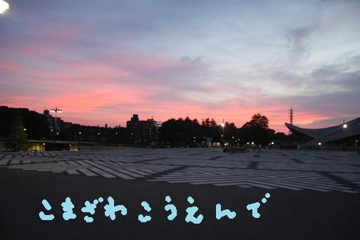 023_R_20100913175250.jpg