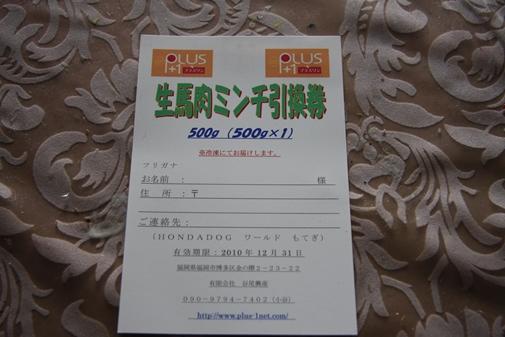 046_R_20101012172729.jpg