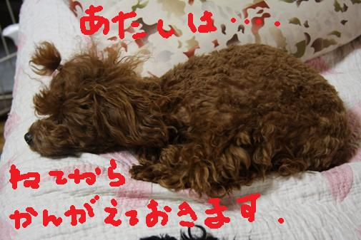051_R_20100702151418.jpg