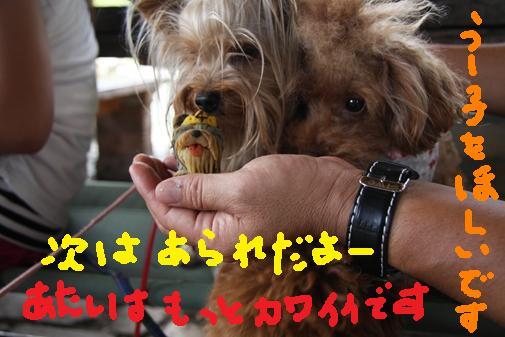 052_R_20100713001107.jpg