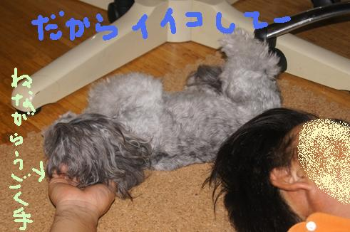 067_R_20110715152000.jpg
