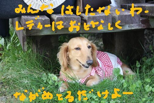 068_R_20100714010057.jpg