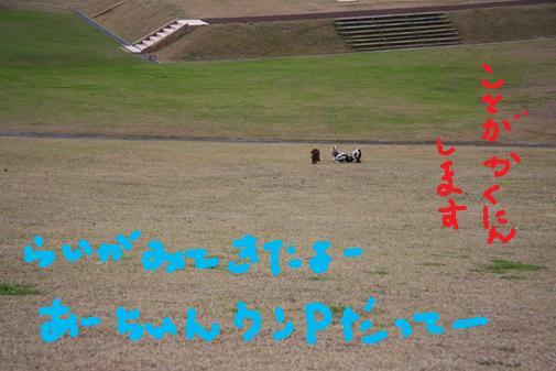 068_R_20101112123427.jpg