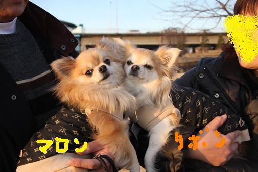 071_R_20110115101350.jpg