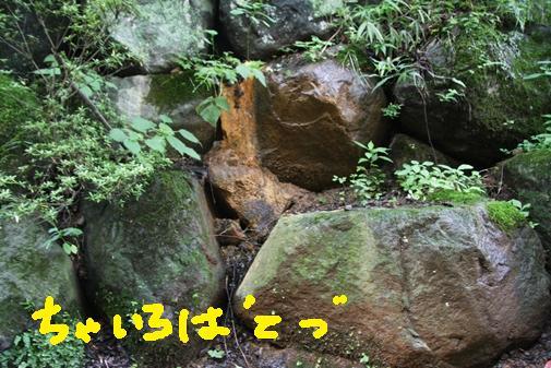 075_R_20100815095047.jpg