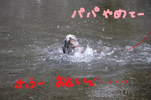 076_R_20100910220913.jpg