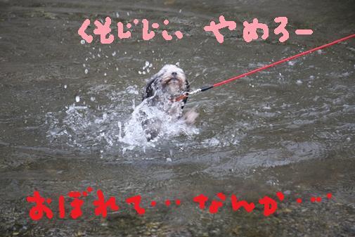 077_R_20100910220912.jpg