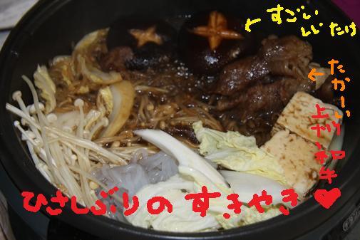 102_R_20101105164831.jpg